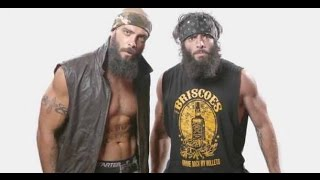 Briscoe Brothers Coming Soon To WWE