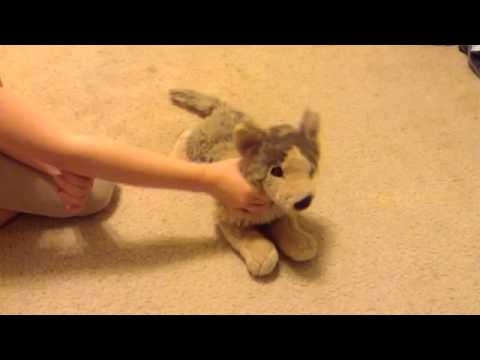 Stuffed animal music video *pop danthology*
