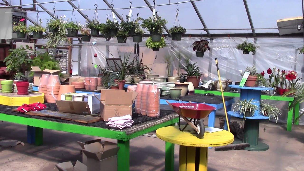 bromms garden center opening