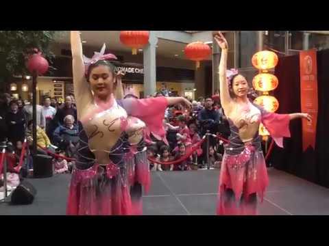 Divine Lotus  - Hengda Dance Academy [Lunar New Year 2018]