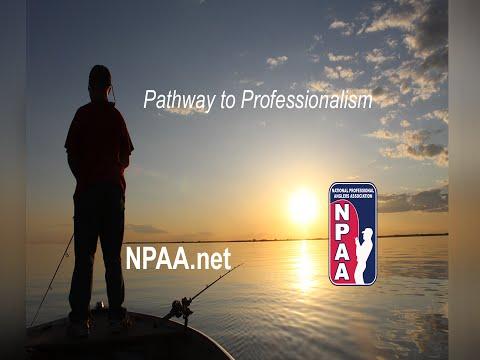 Pathway to Professionalism