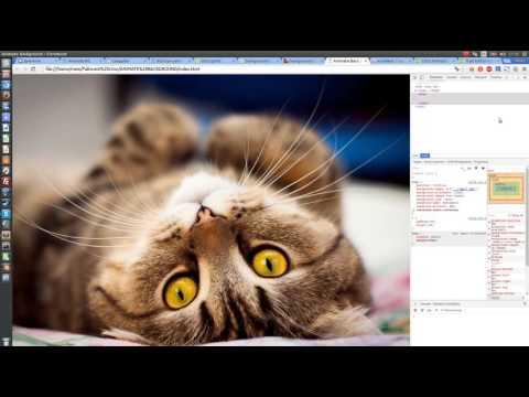 Анимация заднего фона (body) при помощи CSS и HTML