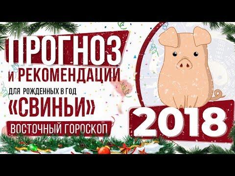 СВИНЬЯ! Восточный гороскоп по годам рождения на 2018 год. Китайский гороскоп для Свиньи