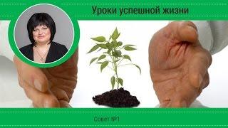 (Короткие уроки успешной жизни) Урок №1.  Семена успеха.