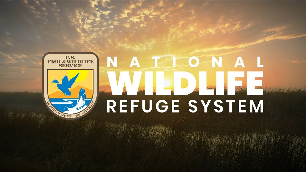 National Wildlife Refuge System - Live Your Wild