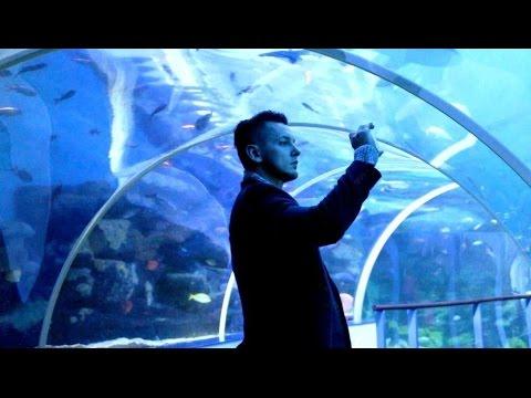 Visit National Sea Life Centre - Birmingham City