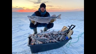 Рыбалка на трофейных щук ХМАО Ендра ноябрь 2020 Часть 2