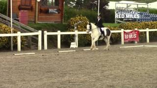 AIRC National Dressage Championships - Primary Winner 2015