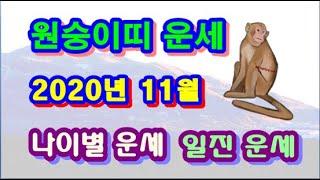 11월 원숭이띠 운세 -  2020년 11월 경자년 정해월 원숭이띠 일진 사주 운세보기2
