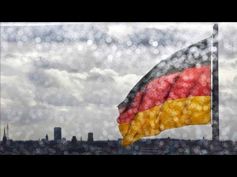 Germany's form of protectionism hinder moderating massive surplus, warns IMF