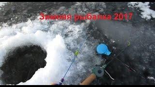 Зимняя рыбалка на опарыша. Густера, Плотва.2017