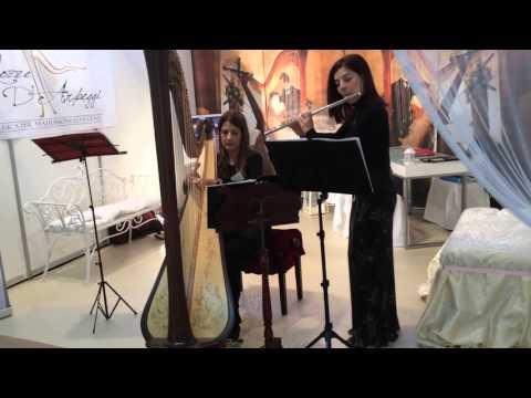 Canone J. Pachelbel Duo arpa e flauto Nozze d