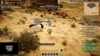 검은사막 쿠노이치 각성스킬 살무 버그영상