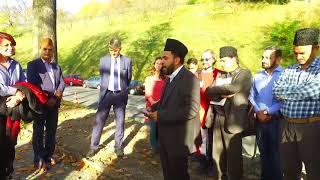 Ahmadi Muslims plant trees in Switzerland