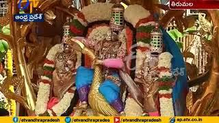 Kalpa Vriksha Vahana Seva Held at Tirumala   Brahmotsavam Eve