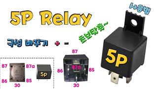 초보자 5P Relay 사용방법, 5p릴레이 마스터