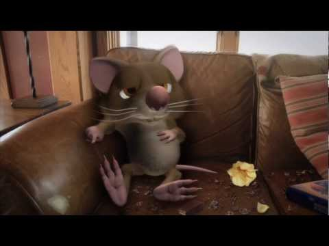 Catseye Pest Control's New Jingle (Extended Commercial)
