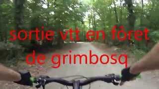 sortie vtt en forêt de grimbosq