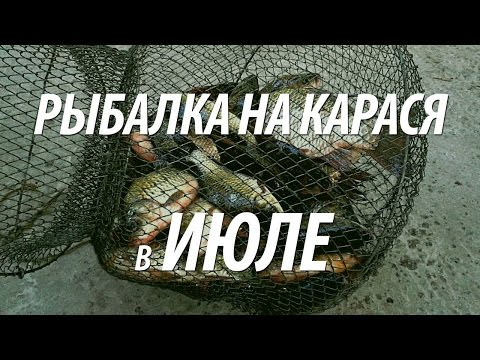 кліпи рыбака