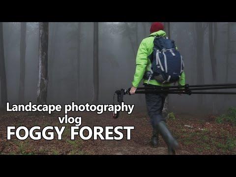 Landscape photography vlog - Tips, lenses, filters, compositions for foggy forests