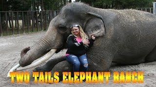 Two Tails Ranch - Elephant Care Facility in Williston Florida!