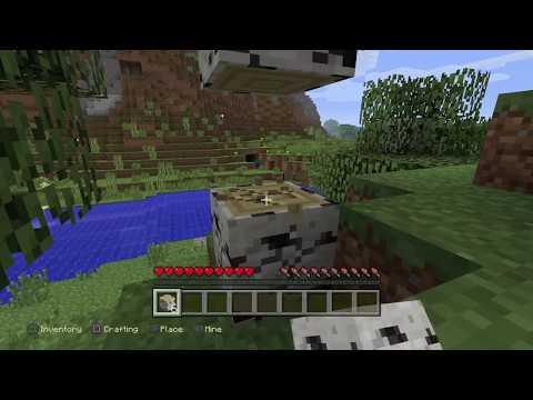 BeaattZz's Live Gameplay Minecraft Ep.1| Survival on Hard With the SaltyPimp