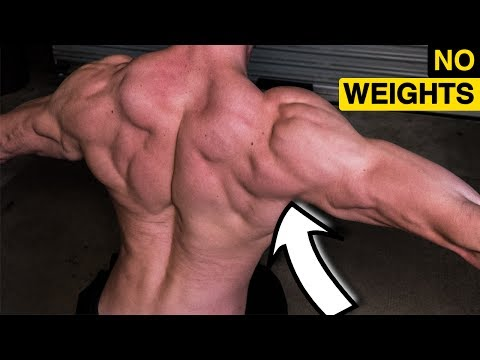 Bigger Rear Delts by Bodyweight (NO WEIGHTS)