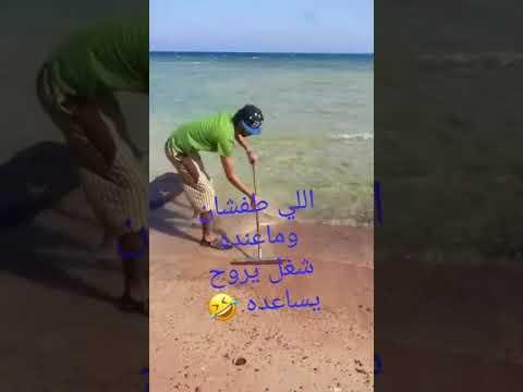 ههههههه طفشان ماعنده عمل مضحك موت 2017