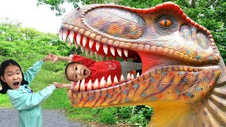 Dinosaurs Appeared !! A magical door opens in a fantastic family home | Nastya,Diana,Ryan,Shfa