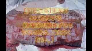 【閲覧注意】 東海村JCO臨界事故 放射能の恐怖  ずさんな管理が招いた悲劇  【衝撃】 被爆再現人形 検索動画 15