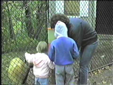 Benson's Animal Park 1987