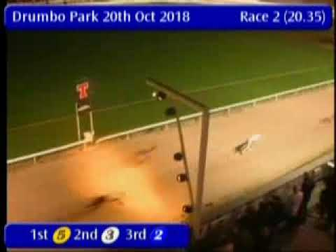 IGB - Try a Trio  20/10/2018 Race 2 - Drumbo Park