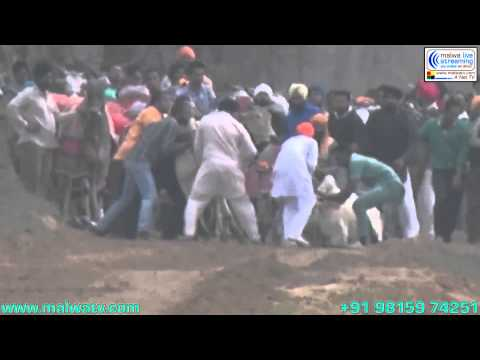 AASI KALAN (Ludhiana) Bullock Cart Racing - 2014. Part 1st.