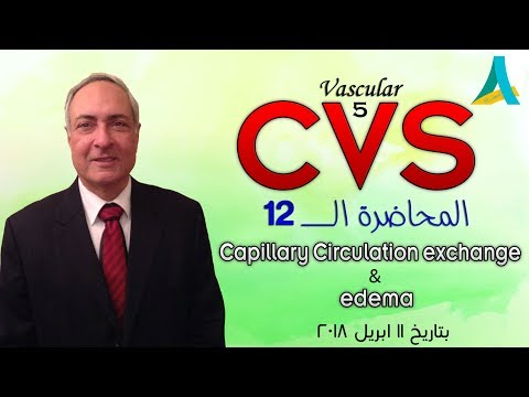 Dr.Nagi - Live Physiology - Lecture 109 - CVS (12)