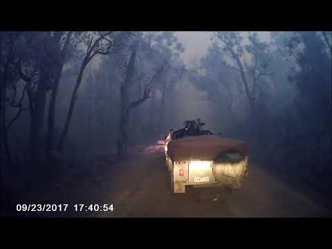 Timbarra Wildfire 23rd September 2017