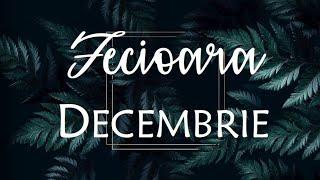 FECIOARA // DECEMBRIE //