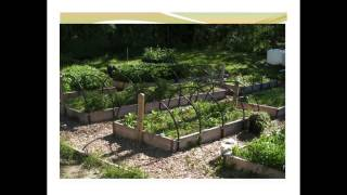 Permaculture and Energy Conservation: Rancho Relaxo, Rocky Mountain House