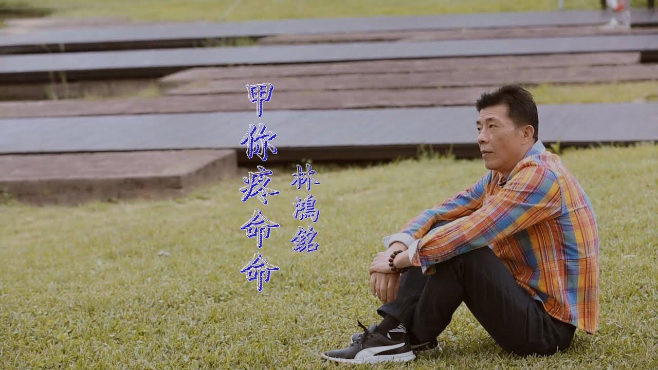 甲你疼命命/林鴻銘/永恆音樂多媒體 - YouTube