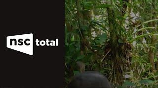 Macuco é filmado em Florianópolis após 20 anos