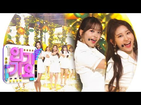 IZ * ONE - Violeta (Violeta) @ Lagu Populer Inkigayo 20190421