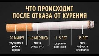 Если Резко Бросить Курить, то... (Из чего сделаны сигареты и ПОТЕНЦИальная ПОЛЬЗА! )