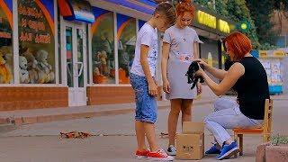 Download БЕЗДОМНЫЙ КОТЕНОК!!! Mp3 and Videos