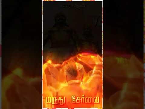 Full Download] Servai Da