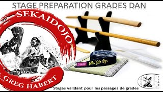 Préparation Grades Dan 2020 - GREG HABERT