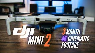 DJI MINI 2 | Three Months Later | 4k Cinematic Footage