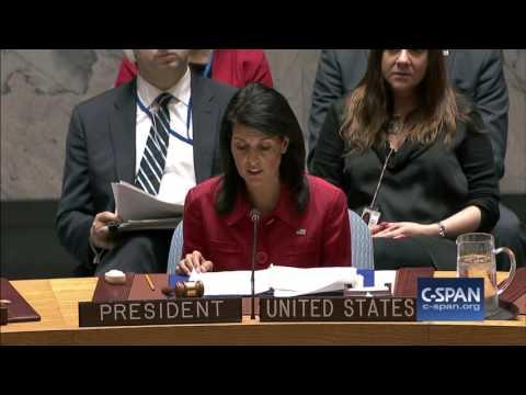 UN Ambassador Nikki Haley on Syria Missile Strike (C-SPAN)