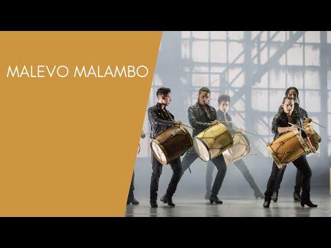 Malevo Malambo / DANCE OPEN festival