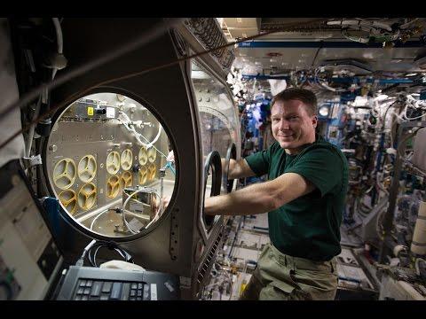 NASA: International Space Station Science