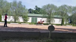 Sofia on school horse at pa riding academy(2)