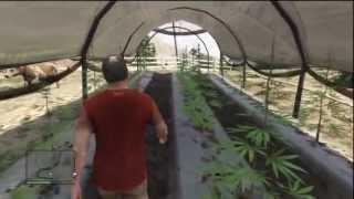 GTA 5 Easter Eggs: Secret Marijuana Farm Easter egg!! (Grand Theft Auto V Easter Egg)